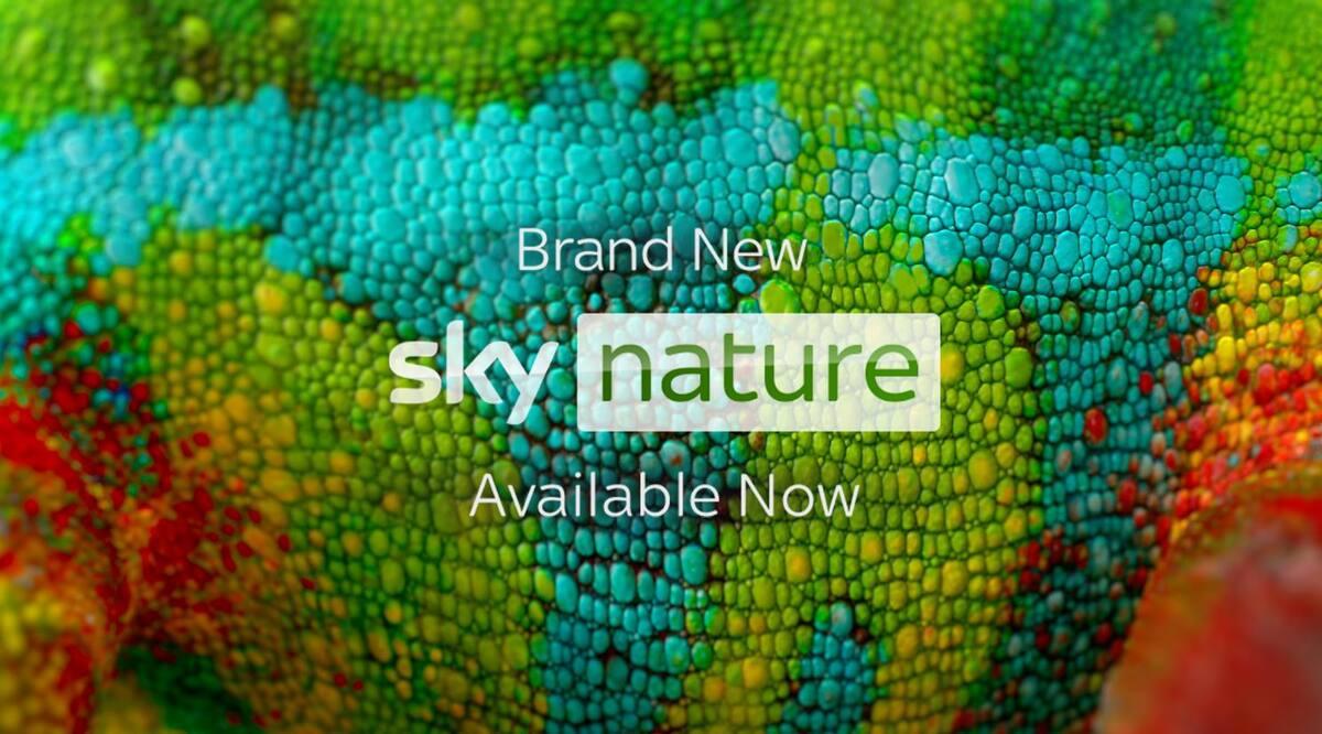 watch sky nature
